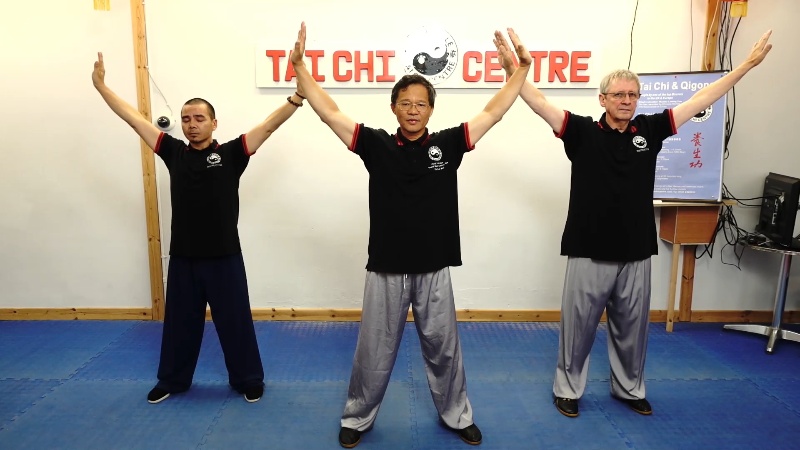 Fundation Qigong;Corrections;Demonstration;Follow me;Sígueme;Instructions